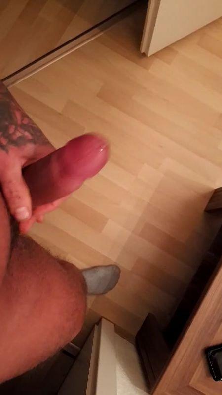 DiBo aus Sachsen,Deutschland